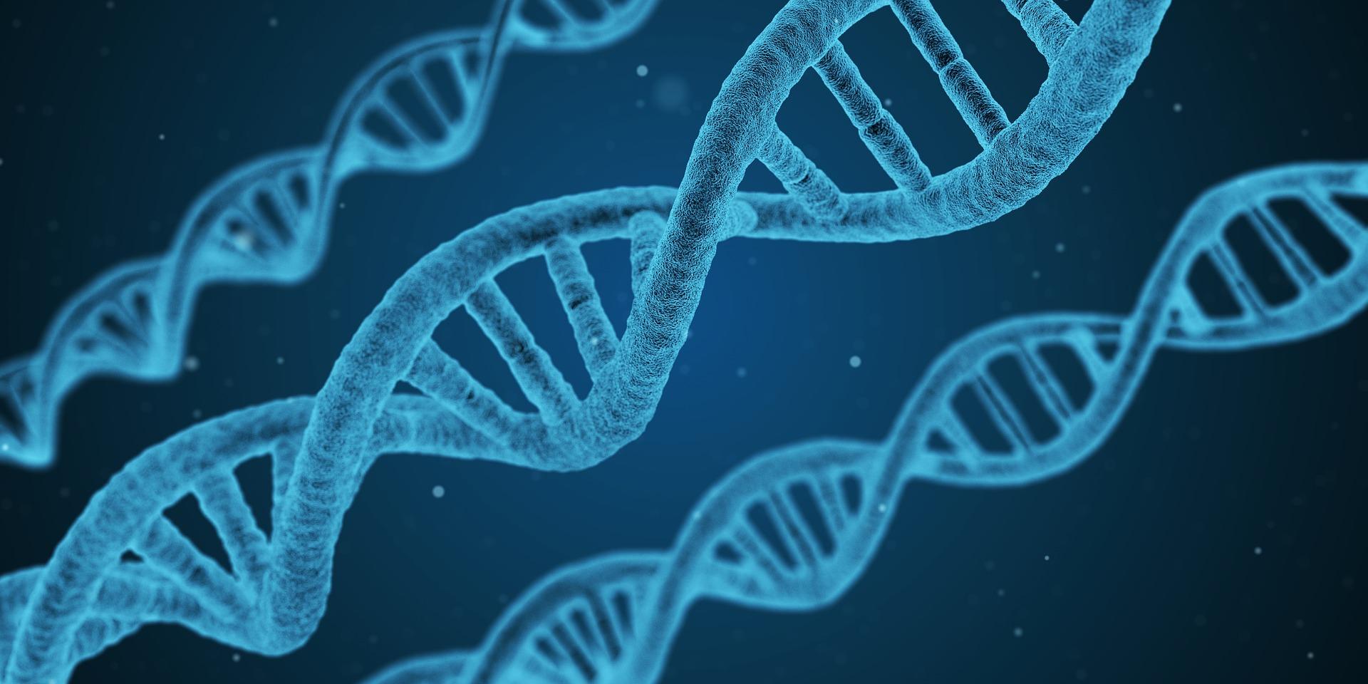 CRISPR/Cas